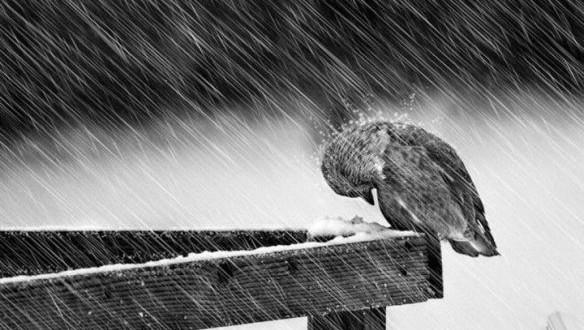 solitudine suona citofono amore pensieri parole