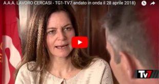 A.A.A. Lavoro cercasi disperatamente – TV7 Rai1