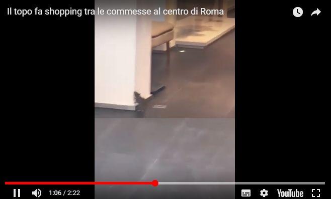 topo shopping commesse roma raggi