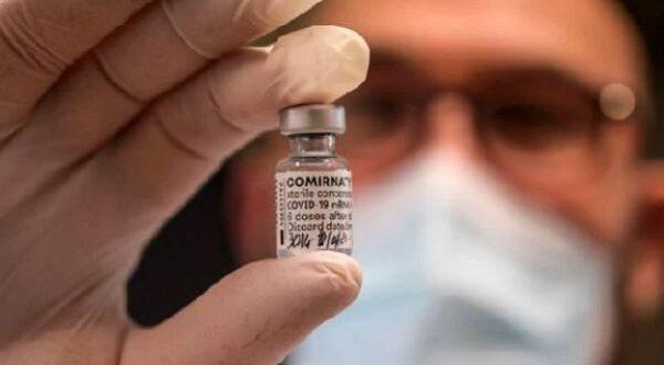 pfizer vaccino esposto procura